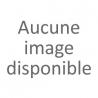 le jujubier (poudre)